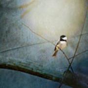 Moonlit Chickadee Art Print