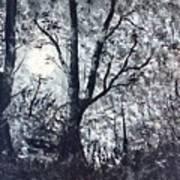 Moonlit Forest  Art Print