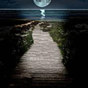 Moonlit Night At The Beach Art Print