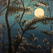 Moonlit Trees Art Print
