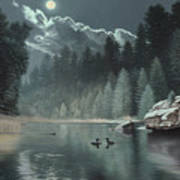 Moonlit Waters-loons Art Print