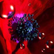 Moonlite Poppy Drops Art Print