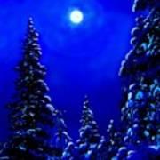 Moonshine On Snowy Pine Art Print