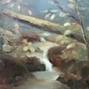 Moore Ck, Asheville, Nc Art Print