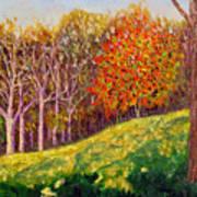 Mooresville 10 11 Art Print