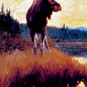 Moose Against Skyline Art Print