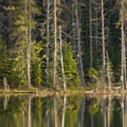 Moose Creek Reservoir Art Print