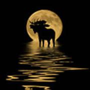 Moose In The Moonlight Art Print