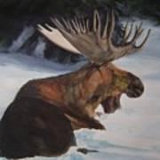 Moose In Winter Art Print