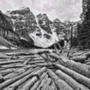 Moraine Lake Driftwood No 1 Art Print