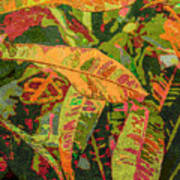 More Fern Abstraction Art Print