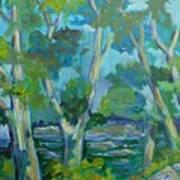 Moria River At Belleville Art Print