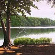 Morning At City Lake Park Art Print