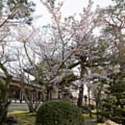 Morning At Horyu-ji Temple Art Print