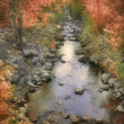 Morning By The Creek Art Print