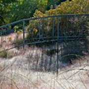 Morning Dew At Pendleton Park 2 Art Print