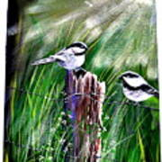 Morning Glory Art Print