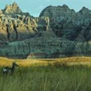 Morning In The Badlands Art Print