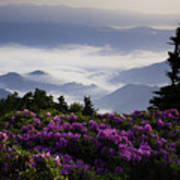 Morning On Grassy Ridge Bald Print by Rob Travis