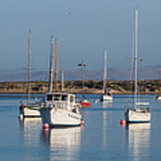 Morning On Morro Bay B3984 Art Print