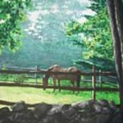 Morning Pasture Art Print
