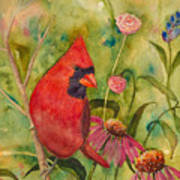 Morning Perch In Red Art Print