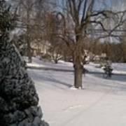 Morris County New Jersey Snowstorm Of 12-26-10 Art Print