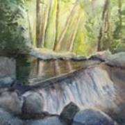 Mosquito Creek 3 Art Print