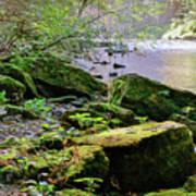 Moss Covered Boulders Art Print