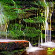Moss Falls - 2981-2 Art Print