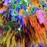 moss of Color Art Print