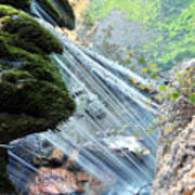 Moss On Waterfall True Color Art Print