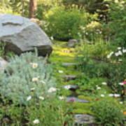 Mossy Path In Tahoe Art Print