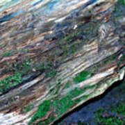 Mossy Rock Art Print