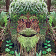 Mossman Tree Stump Art Print