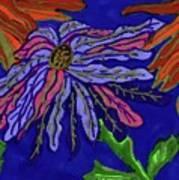 Most Unusual Poinsettia In A Midnight Blue Sky Art Print