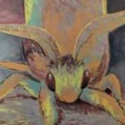 Moth Of Little Green Art Print