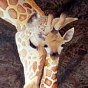 Mother And Child Art Print