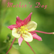 Mothers Day Card 5 Art Print