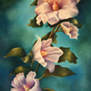 Mothers Rose Of Sharon Art Print