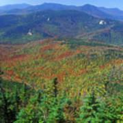 Mount Chocorua Foliage Art Print
