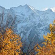 Mount Currie Autumn Art Print