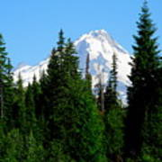 Mount Hood Majestic Art Print