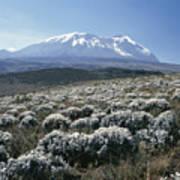 Mount Kilimanjaro, The Breach Wall Art Print