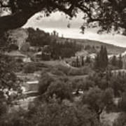 Mount Of Olives Art Print