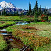 Mount Rainier- Upper Tipsoo Lake Art Print