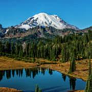 Natures Reflection - Mount Rainier Art Print
