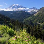 Mount Rainier From Scenic Viewpoint Art Print