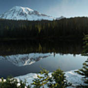 Mount Rainier Reflection Lake W/ Tree Art Print