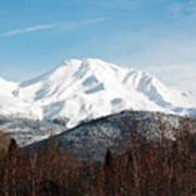 Mount Shasta Art Print